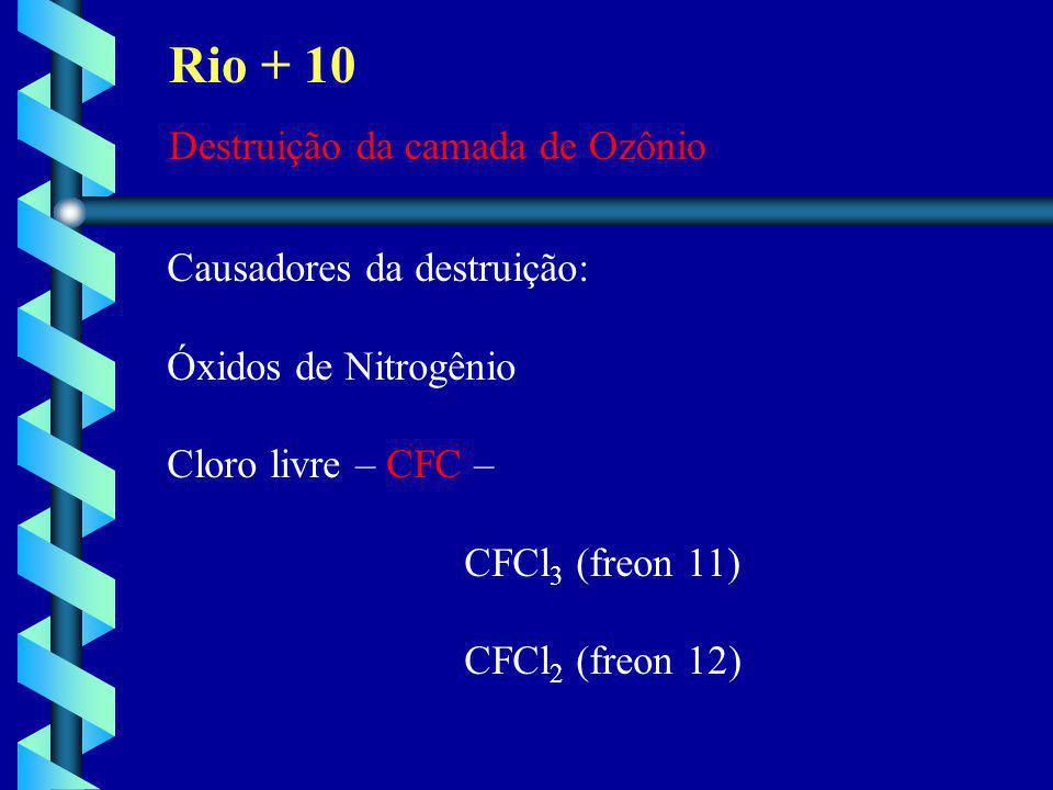 Rio + 10 Destruição da camada de Ozônio Causadores da destruição: Óxidos de Nitrogênio Cloro livre – CFC – CFCl 3 (freon 11) CFCl 2 (freon 12)