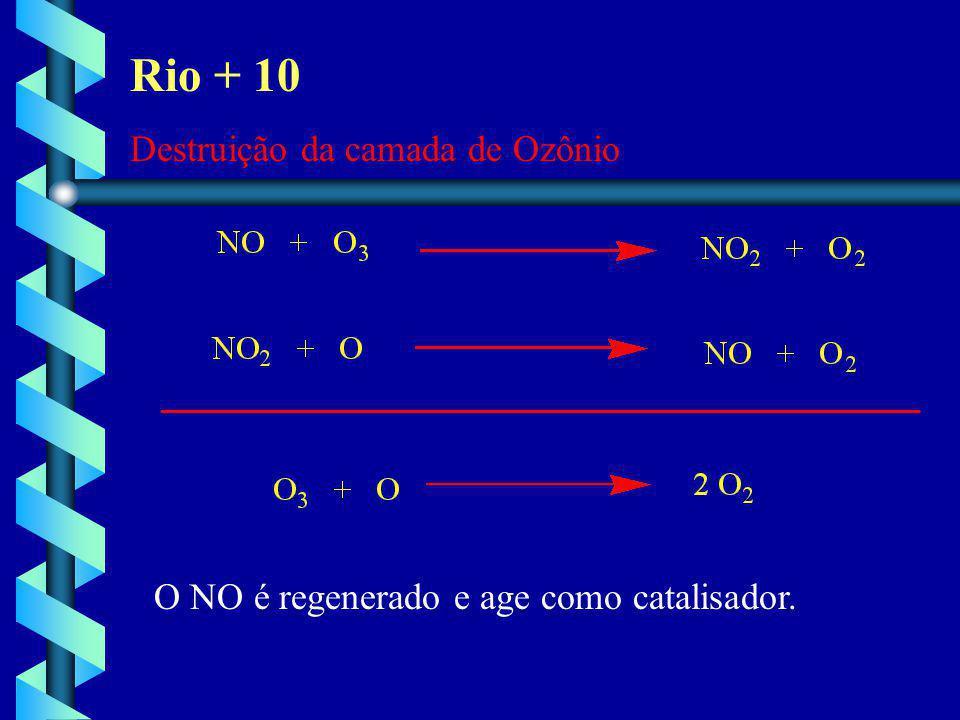 Rio + 10 Destruição da camada de Ozônio O NO é regenerado e age como catalisador.