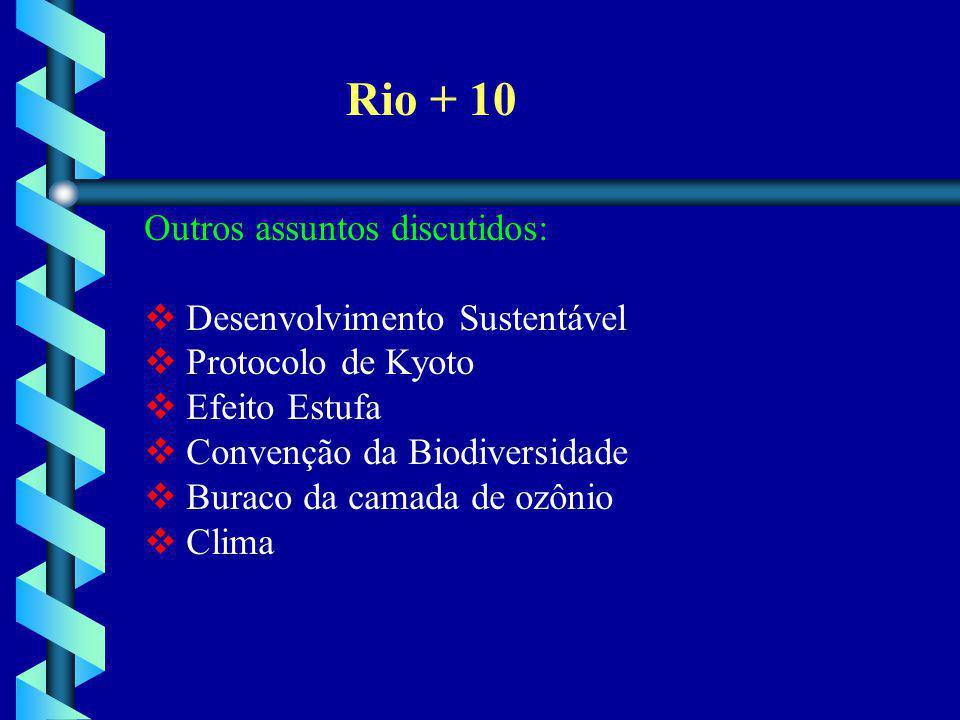 Rio + 10 Outros assuntos discutidos:  Desenvolvimento Sustentável  Protocolo de Kyoto  Efeito Estufa  Convenção da Biodiversidade  Buraco da cama