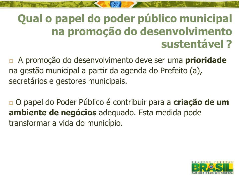 A promoção do desenvolvimento deve ser uma prioridade na gestão municipal a partir da agenda do Prefeito (a), secretários e gestores municipais.  O