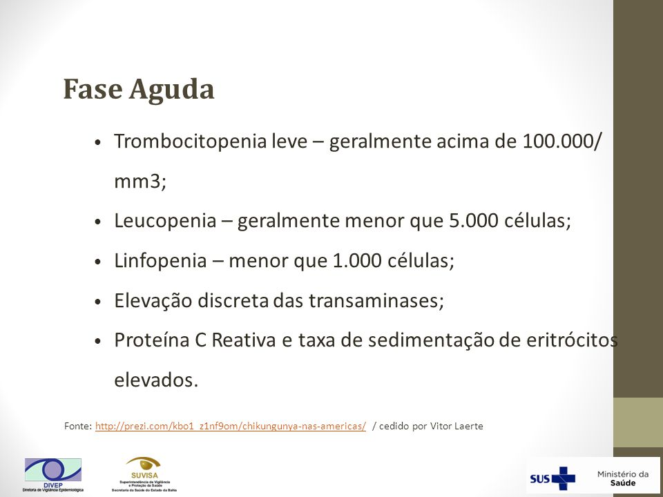 Fonte: http://prezi.com/kbo1_z1nf9om/chikungunya-nas-americas/ / cedido por Vitor Laertehttp://prezi.com/kbo1_z1nf9om/chikungunya-nas-americas/ Trombo