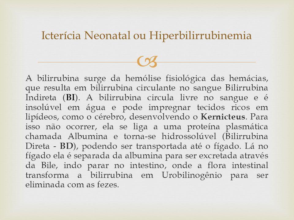  A bilirrubina surge da hemólise fisiológica das hemácias, que resulta em bilirrubina circulante no sangue Bilirrubina Indireta ( BI ). A bilirrubina