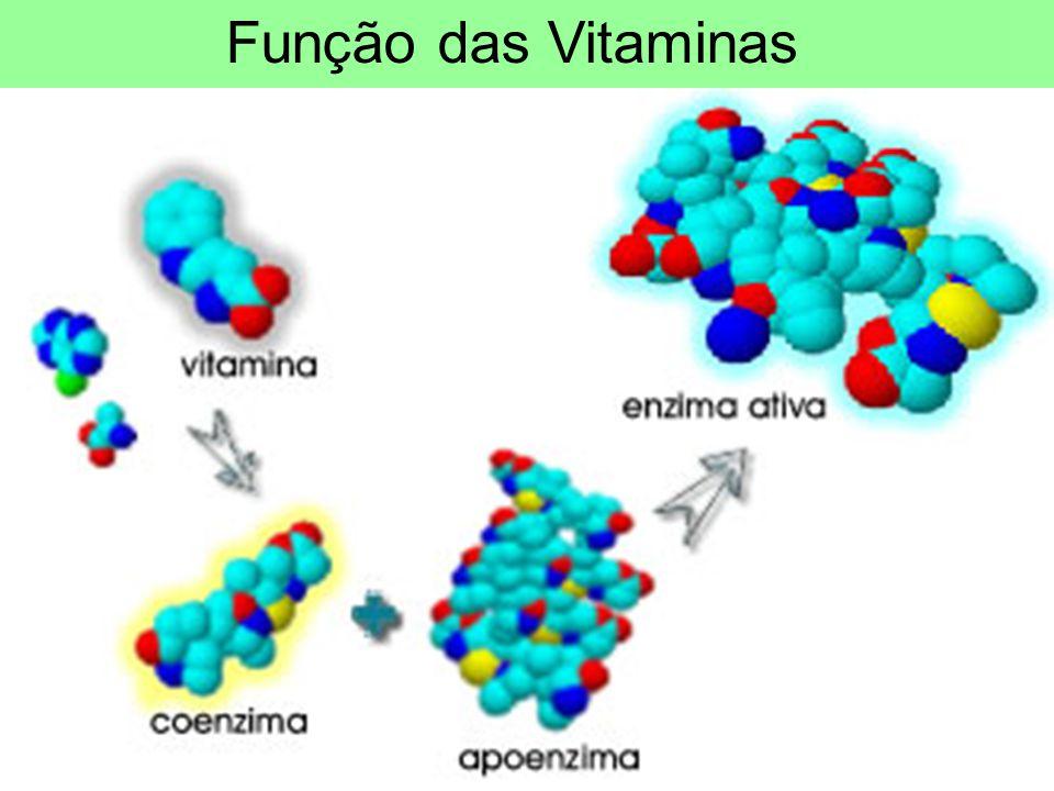 Função das Vitaminas