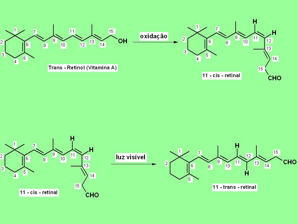 REFERÊNCIAS BIBLIOGRÁFICAS: A.F.Wagner e K. Folkers – Vitamins ans Coenzymes.