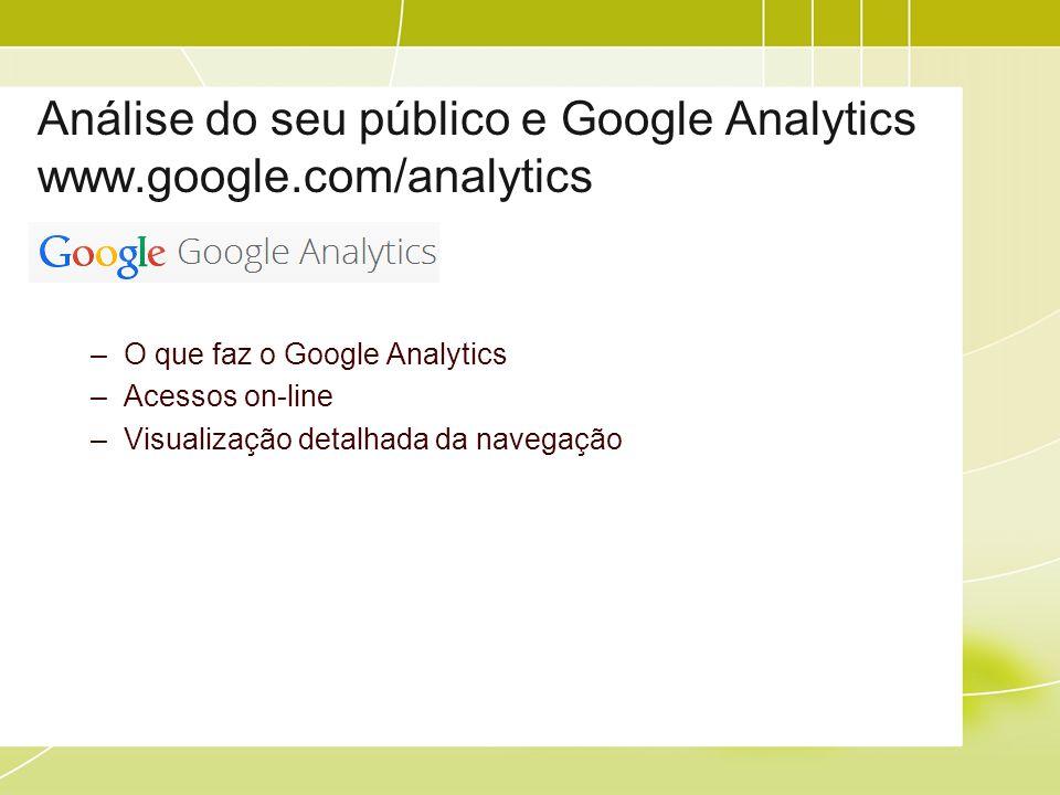 Análise do seu público e Google Analytics www.google.com/analytics –O que faz o Google Analytics –Acessos on-line –Visualização detalhada da navegação
