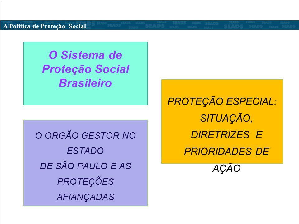 O Sistema de Proteção Social Brasileiro Diretriz da Politica de Proteção Especial