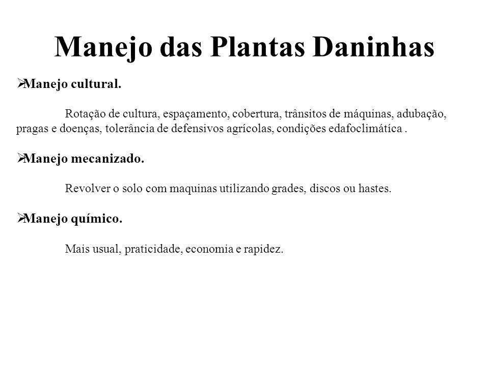 Manejo das Plantas Daninhas  Manejo cultural. Rotação de cultura, espaçamento, cobertura, trânsitos de máquinas, adubação, pragas e doenças, tolerânc