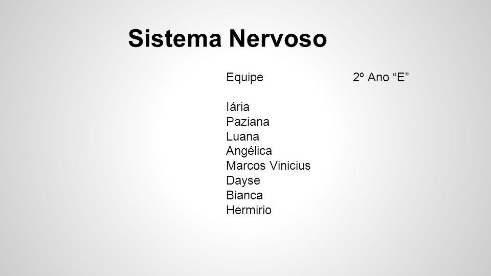 """Sistema Nervoso Equipe 2º Ano """"E"""" Iária Paziana Luana Angélica Marcos Vinicius Dayse Bianca Hermirio"""