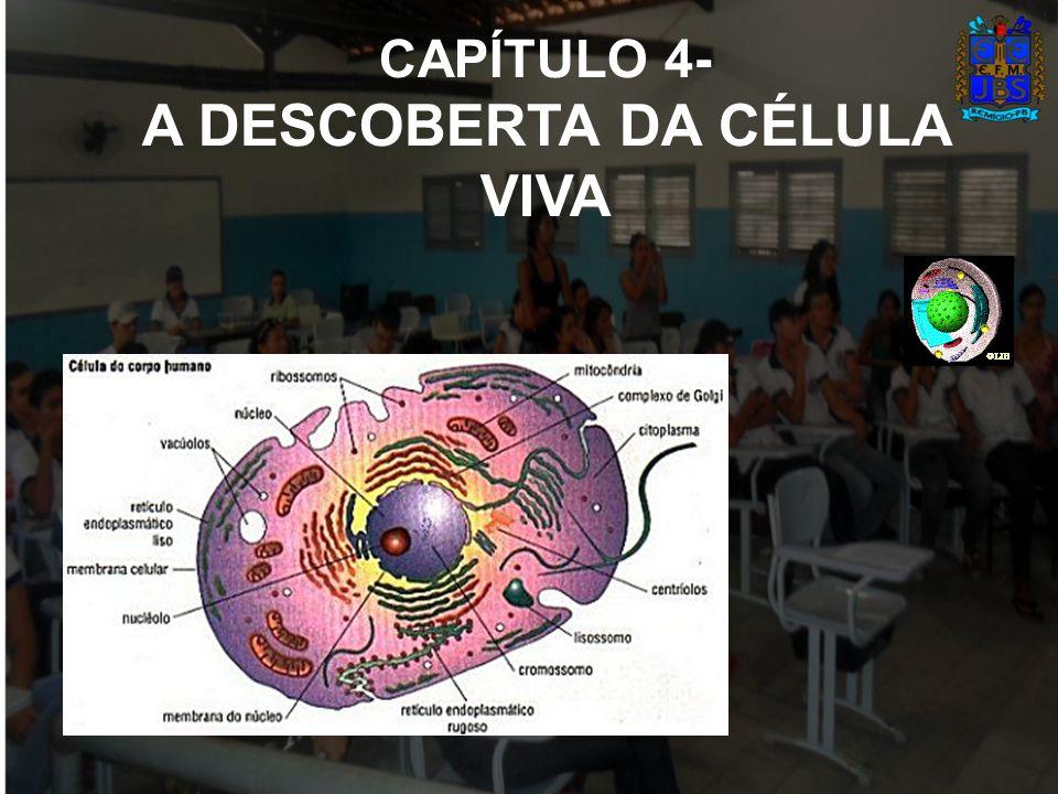A Membrana Plasmática É uma capa dupla que envolve e protege todo o interior da célula.
