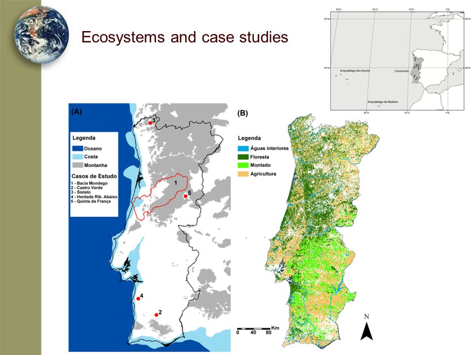 Ecosystems and case studies