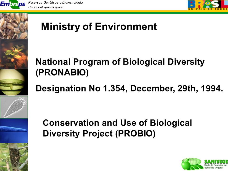Recursos Genéticos e Biotecnologia Um Brasil que dá gosto National Program of Biological Diversity (PRONABIO) Designation No 1.354, December, 29th, 1994.