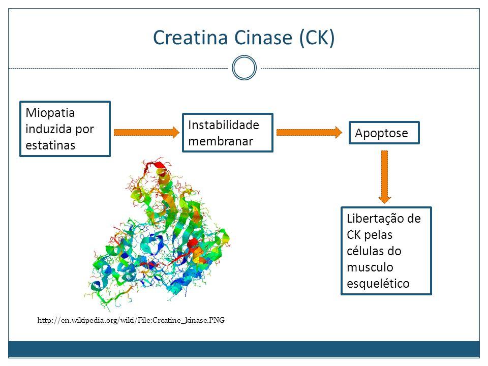 Faculdade de medicina da universidade de coimbra bioqumica ii 30 creatina ccuart Image collections