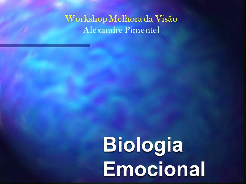 9fec36c50d6d4 Biologia Emocional Workshop Melhora da Visão Alexandre Pimentel ...