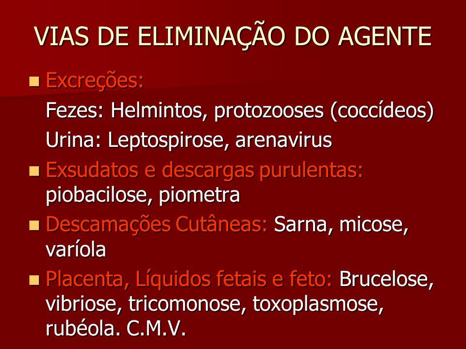 agenți patogeni helminți