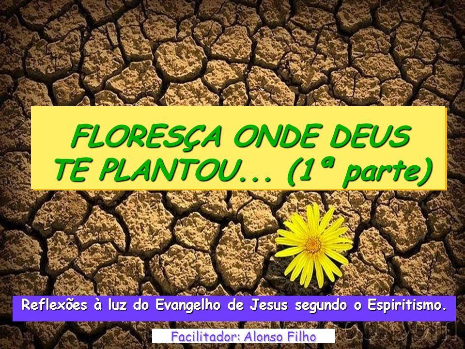 Floresça Onde Deus Te Plantou 1ª Parte Facilitador