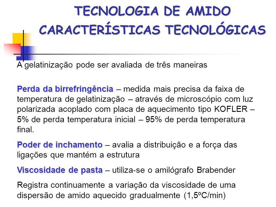 Tecnologia De Amido Amylum Amylum Termo Greco Latino